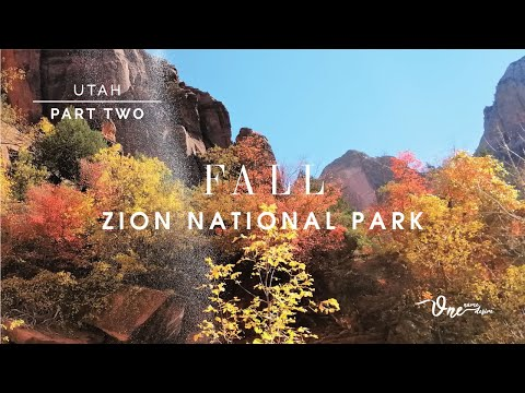 Hidden Canyon Trail | Zion National Park Hikes | Zion