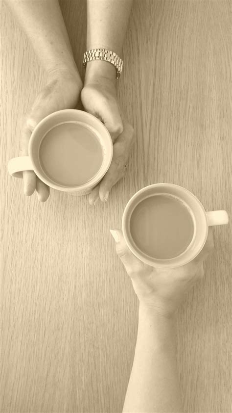 Free Images : hand, cafe, people, tea, meeting, female