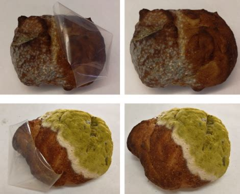 NanoPack says it has film that can extend bread shelf life