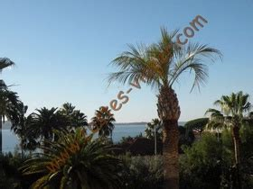 Viager occupé - Cannes(06400) - Ref : 421706160 – Costes