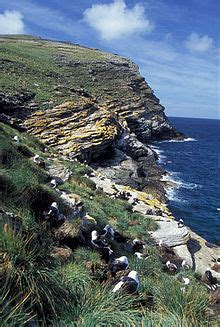 Geography of the Falkland Islands - Wikipedia