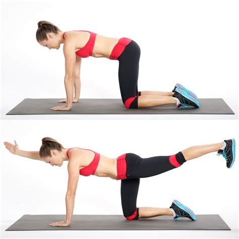 Circuit One: Bird Dog | Ab and Core Workout | POPSUGAR