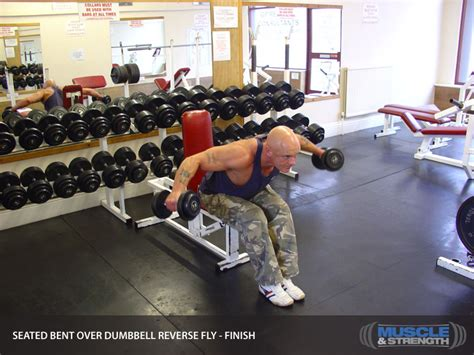 Seated Bent Over Dumbbell Reverse Fly Video Exercise Guide
