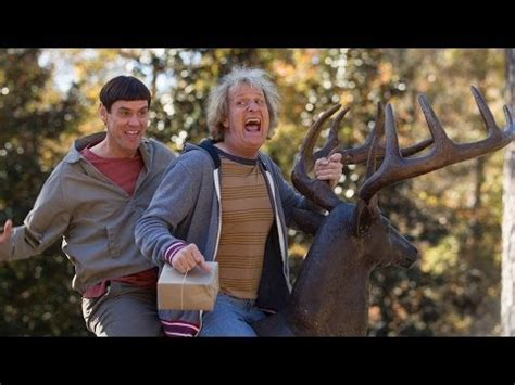 Dumb and Dumber 2 Trailer, Release Date, Cast, Plot, Photos